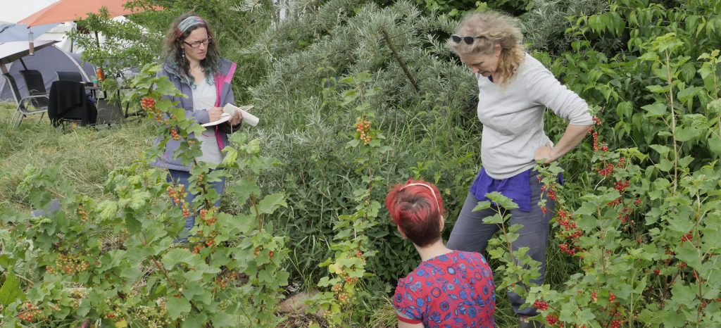 three women discussing planting a forest garden surrounded by green plants at Crabapple Community