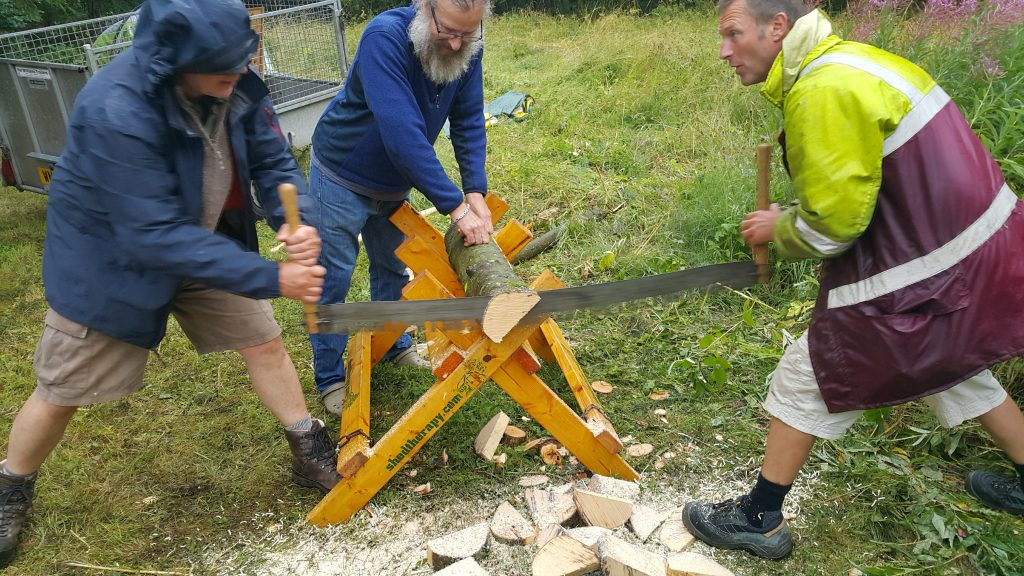 2 men using large saw to cut a tree-trunk
