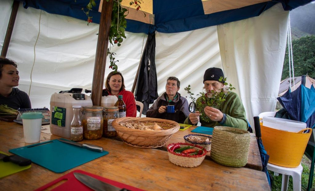 Autumn's herbalism workshop at Harvest Camp 19