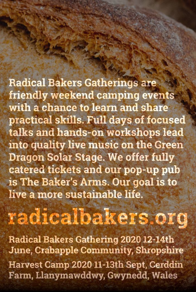 radical bakers 2020 flyer