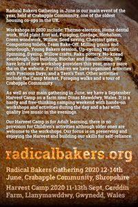 radical bakers 2020 flyer back